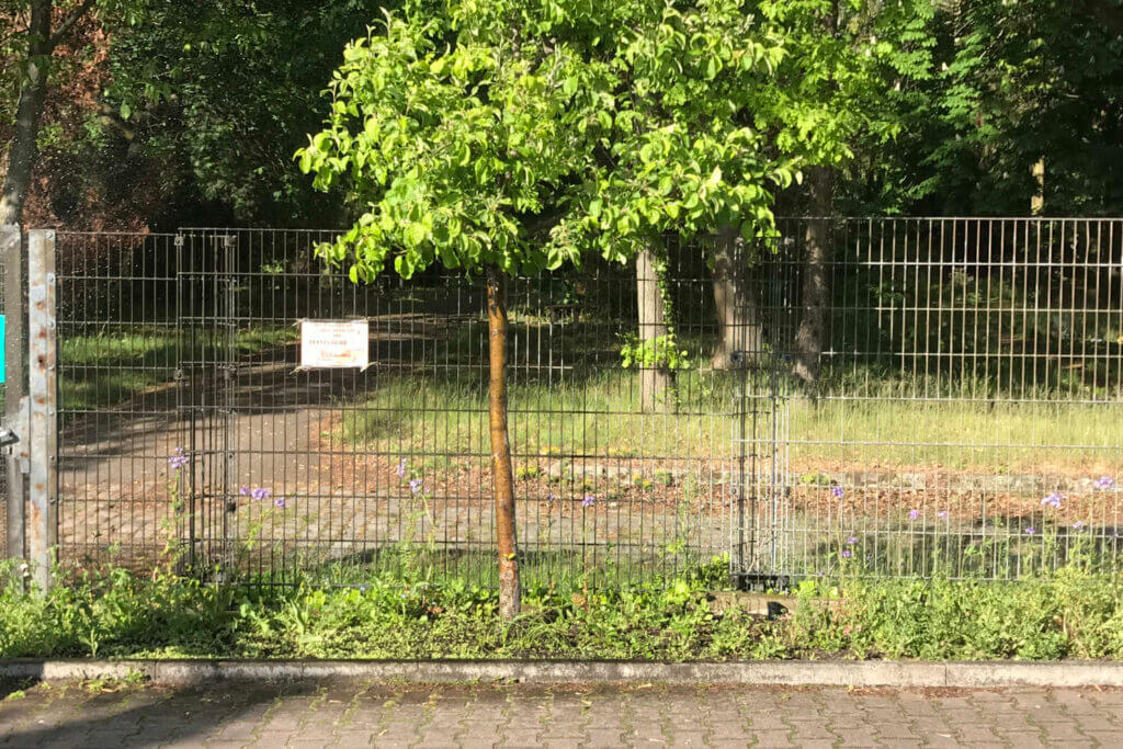 Wiesenstreifen am Friedhof mit Metallzaun